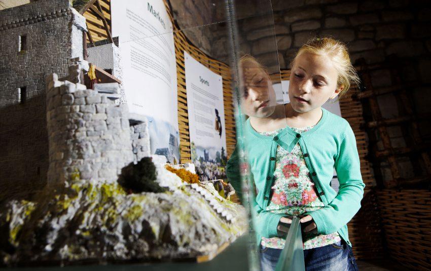 Museums Northumberland Hexham Display Case